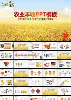 农业丰收场景工作计划PPT模板