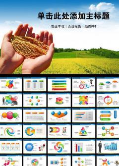 农业丰收会议报告宣传PPT模板