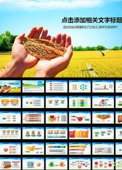 适合农业播种生产的丰收PPT模板