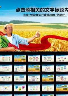 农业稻谷喜悦丰收报告PPT模板