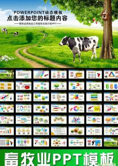 畜牧业养殖生产PPT模板