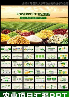 农业项目汇报农业项目介绍动态PPT