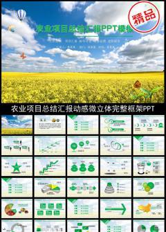农业项目汇报PPT农业计划总结汇报模板