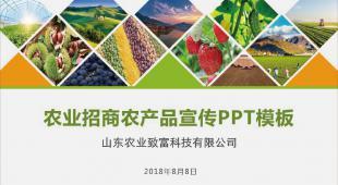 农产品企业宣传/农产品招商 动态PPT模板