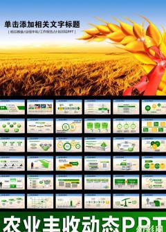 农业丰收金融通用PPT模板