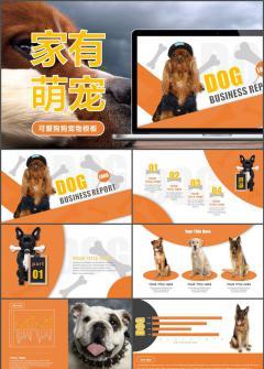 【叶雪PPT】橙色可爱狗狗公益宣讲动态模板