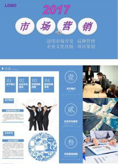 市场开发 品牌宣扬 企业文化展示 商业项目策划