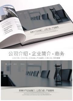 沉稳大气企业简介公司介绍产品宣传PPT模板