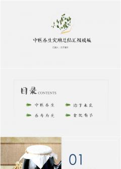 【文子演示】中医养生|中药商务实用模板
