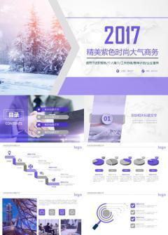 精美紫色时尚大气商务企业产品介绍推广工作总结商业计划