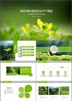 2017绿色清新植物成长PPT模板