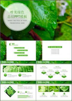 唯美绿色工作总结通用PPT模板