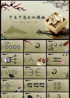 中医中药文化中药养生工作计划汇报PPT模板