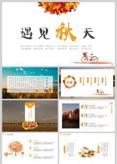 【秋意浓】秋天主题元素模板|秋日文艺风|支持一键换图