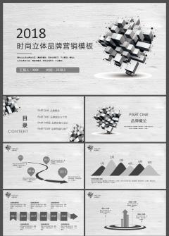 黑白简约微粒体企业品牌营销策划方案ppt模板