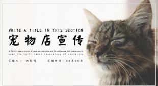 2019年宠物店PPT模板下载